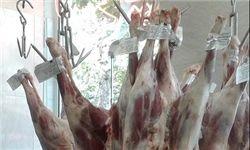 کاهش قیمت گوشت گوسفندی در بازار