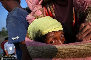 تصاویری از آوارگی مسلمانان میانمار
