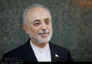 صالحی:واحد۲نیروگاه بوشهر راه اندازی میشود