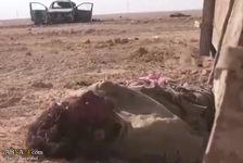 فیلم/ بلایی که تیپ فاطمیون به سر داعش آورد