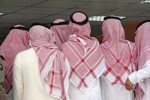 درآمد ۸۰۰ میلیارد دلاری دولت عربستان از مصادره اموال شاهزادگان