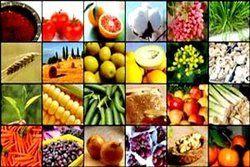 افزایش ۳۰ درصدی واردات محصولات کشاورزی در دولت یازدهم+ نمودار
