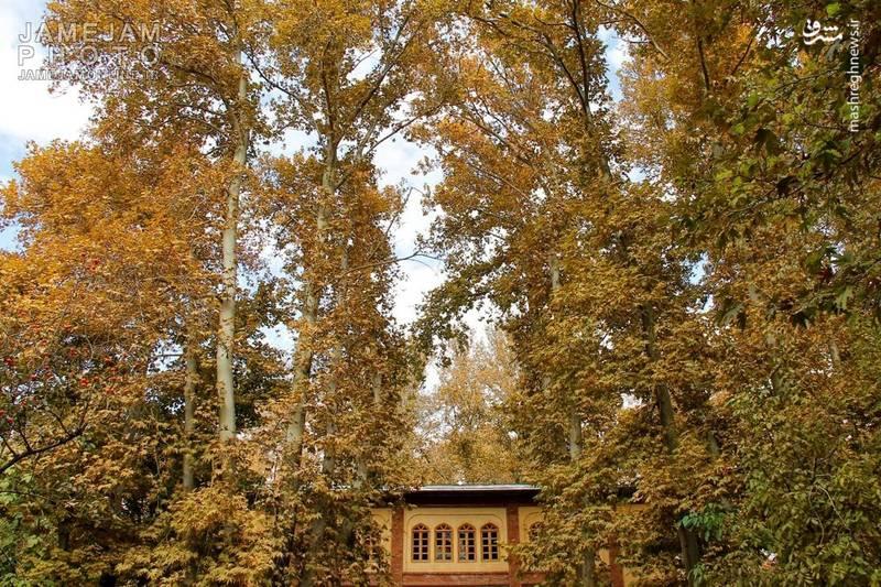 طبیعت پائیزی تهران