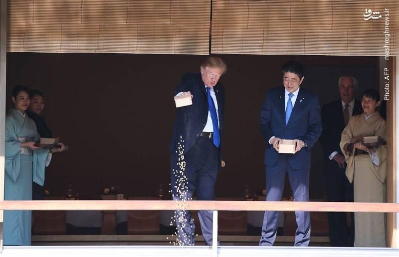 غذاریختن برای ماهیان در سفر ترامپ به توکیو. او در تور آسیایی خود به چین، ویتنام و فیلیپین نیز سفر کرد.