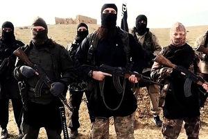دوراهی امریکا در سوریه با پایان داعش