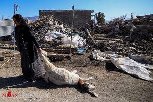روستاهای سر پل ذهاب در دومین روز زلزله