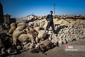 از بین رفتن سرمایه های روستایی های زلزله زده