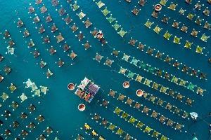تصویر هوایی زیبا از سواحل ویتنام