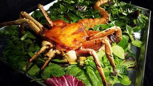 عکس/ تبدیل مرغ به خرچنگ!