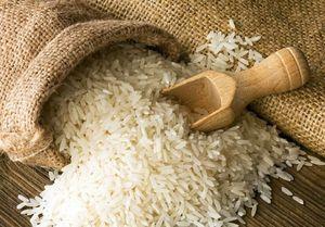 نقد کارشناسی به تصمیم دولت در مورد برنج +عکس