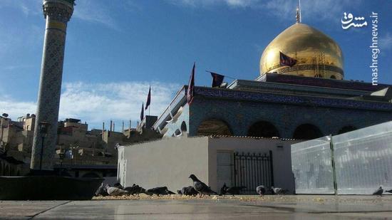 حرم حضرت زینب (س) پس از پایان داعش