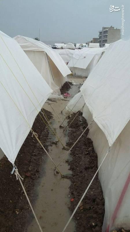 جمع شدن آب در کنار چادرهای زلزلهزدگان