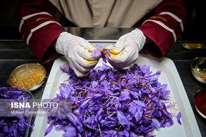 قیمت هر کیلو زعفران چقدر است؟