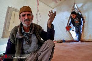 عکس/زلزلهزدگانی که چند ماهیست در چادر زندگی میکنند!
