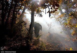 تازهترین جزییات درباره آتشسوزی پارک ملی گلستان