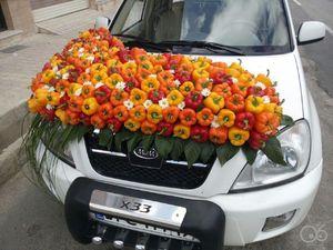 عکس/ تزیین ماشین عروس با فلفل دلمهای