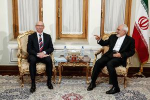 دیدار رئیس گروه روابط با ایران پارلمان اروپا با وزیر امور خارجه