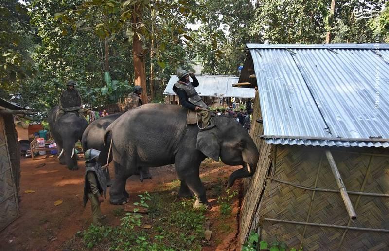 تخریب ابنیه غیرقانونی در منطقه حیات وحش گواهاتی هند