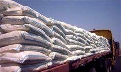واردات برنج در فصل ممنوعیت همچنان ادامه دارد