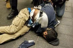 تصویر مظنون انفجار در منهتن