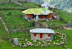 عکس/ طبیعت زیبای روستای ماسال