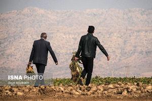 عکس/ مشکلات کشاورزان کوهدشت لرستان