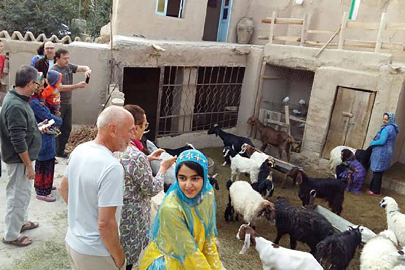 فیلم/ یک روستایی با درآلمد چند میلیارد دلاری