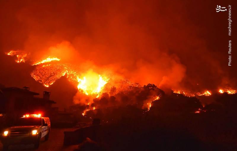 تداوم آتش سوزی مهیب در جنگلهای کالیفرنیا