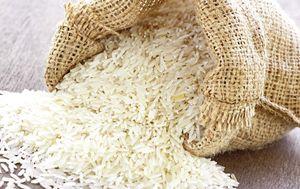 اختصاص 1میلیارد دلار ارز یارانهای برای واردات برنج