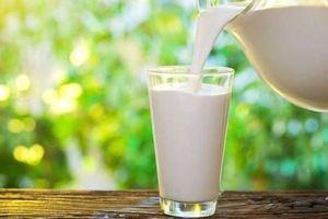 افزایش قیمت «شیر» جدی شد