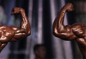 عضلات بدن با کمک این دو پروتئین شکل میگیرند