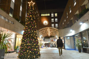 چه تعداد درخت کریسمس در تهران فروخته شد؟