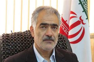 مدیر کل ورزش و جوانان تهران، سرمربی جدید نفت!