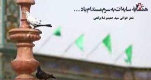 فیلم/شعرخوانی برقعی در رثای کریمه اهل بیت(س)