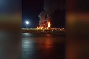 فیلم/ آتش زدن مجسمه میدان الغدیر بوشهر