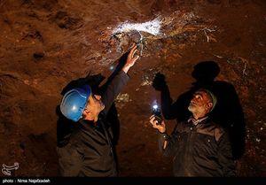 ارزش کل ذخایر مواد معدنی ایران چقدر است؟