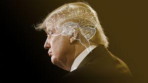 آیا ترامپ مشکل روانی دارد/ جامعه شناسان آمریکایی چه میگویند؟+ فیلم