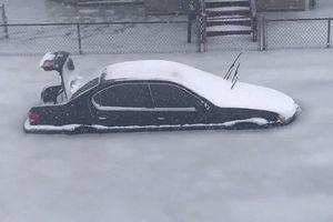 فیلم/ سیلاب یخ در خیابان های بوستون