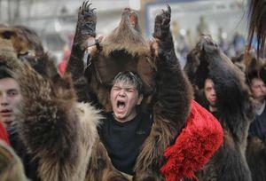 عکس/ رژه خرسها در رومانی