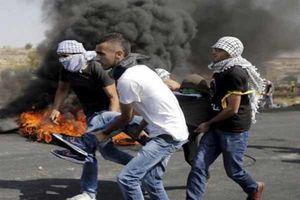 شهادت ۲۰۱ فلسطینی بدون محاکمه