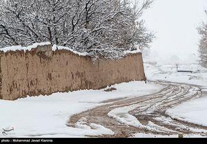 بارش اولین برف زمستانی در کرمان