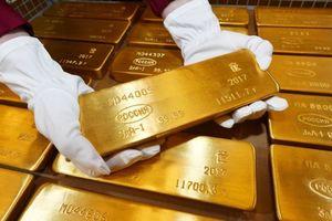 تاثیر نمایشگاههای خارجی در قاچاق طلای ایران
