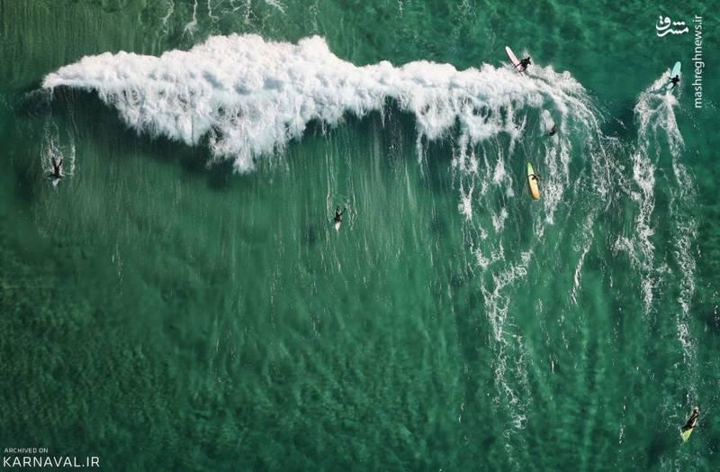 سوار بر موج   استرالیا/موج سوارانی شناور بر آب های ساحل بوندای بیچ (Bondi Beach) در سیدنی.