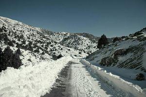 عکس/ زمستان در ارتفاعات شاهرود
