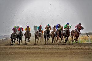اسبهای دوپینگی که همچنان میتازند!