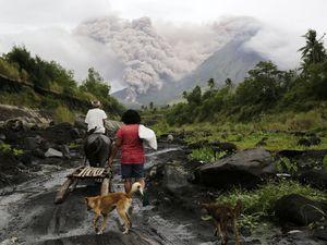 عکس/ فرار از گدازههای آتشفشان