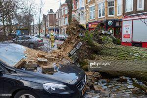 عکس/ خسارات طوفان سهمگین در هلند