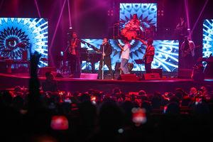 عکس/ کنسرت امیرعباس گلاب در جشنواره موسیقی فجر