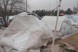 بلایی که باد بر سر چادر زلزله زدگان آورد