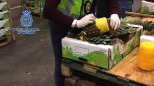 عکس/ جاسازی مواد مخدر در آناناس